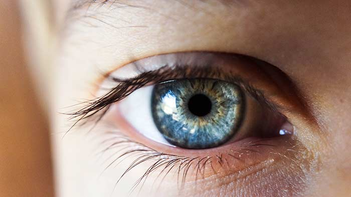 Colour Vision Deficiencies  What They Are and How They Affect Your Vision