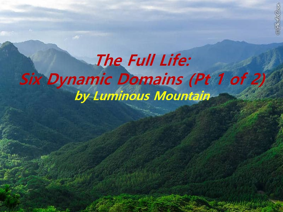 The Full Life: Six Dynamic Domains (Pt 1 of 2)