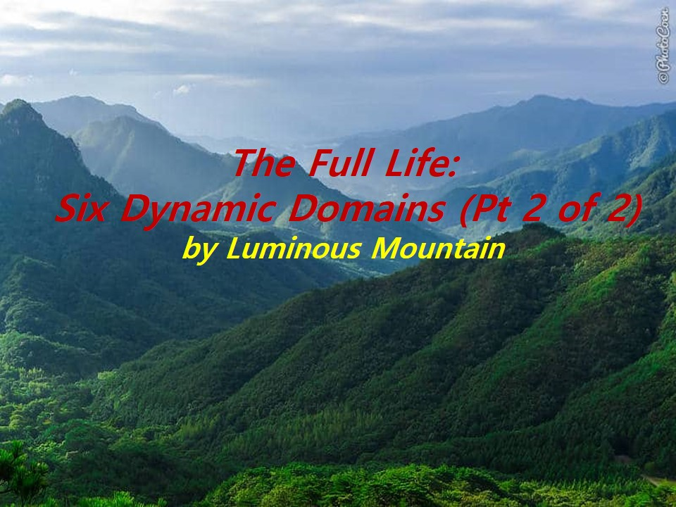 The Full Life: Six Dynamic Domains (Pt 2 of 2)